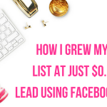 How I Grew My Email List At Just $0.50 Per Lead Using Facebook Ads