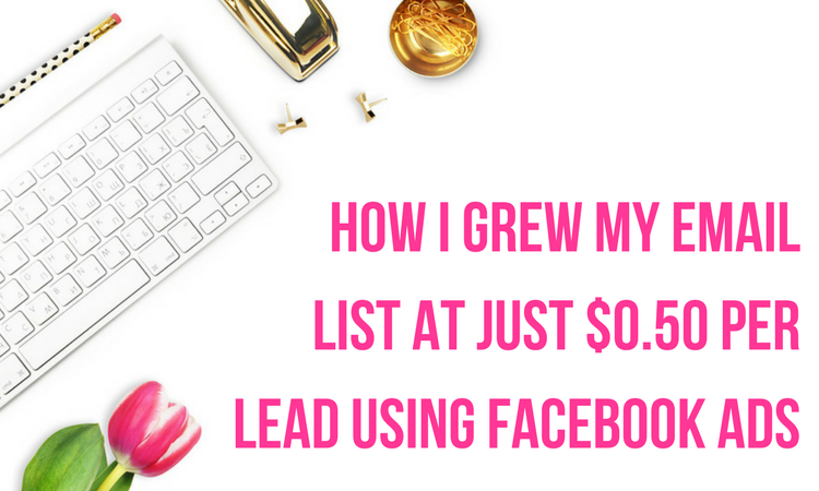 Detailed Facebook ads case study: step by step guide broken down to explain exactly what I did to grow my subscriber list, at less than $0.50 per lead
