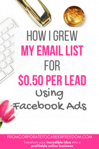 A detailed case study outlining the exact steps I took to gain over 500 email subscribers using facebook ads, and paying only $0.50 per lead